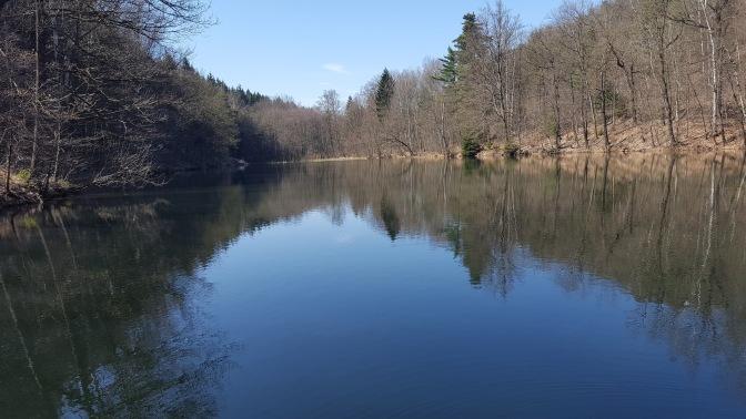 Wandern im Tharandter Wald (bei Dresden)